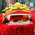 Lion Dance at Lantern Festival